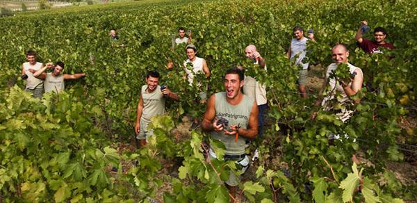 SanPa Residents smiling in the vineyards